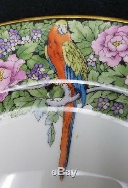 ROSENTHAL china 2110 TROPICAL PARROTS pattern 19-piece SET dinner cup saucer